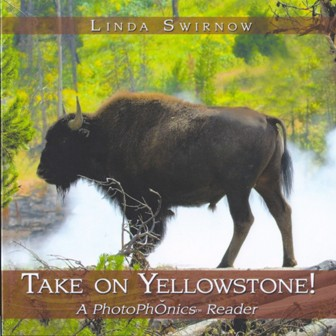 Take on Yellowstone! Book cover